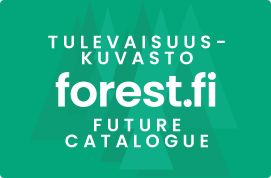 Metsäbiotalouden tulevaisuuskuvasto / Forest Bioeconomy Future Catalogue