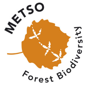 METSO-logo-eng
