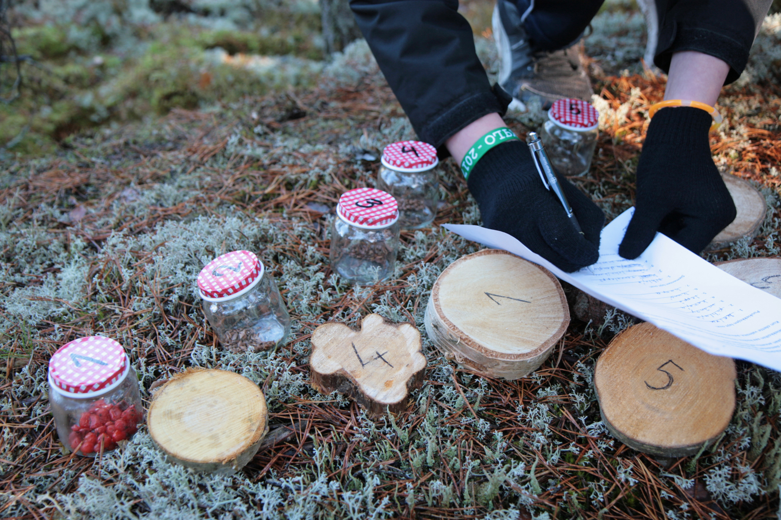 The young scouts and guides have a lot of knowledge about forests. Photo: Anna Kauppi