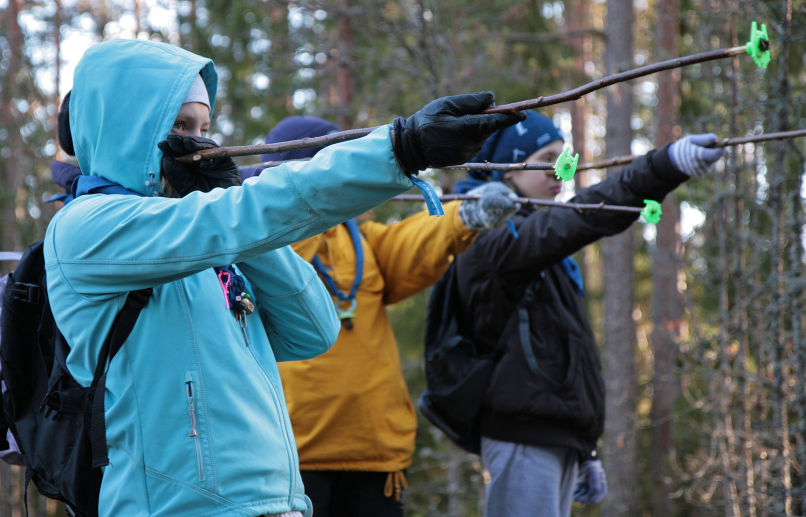 The finnish scouts and guides practises determining the height of a pine tree with a relascope. Photo: Anna Kauppi