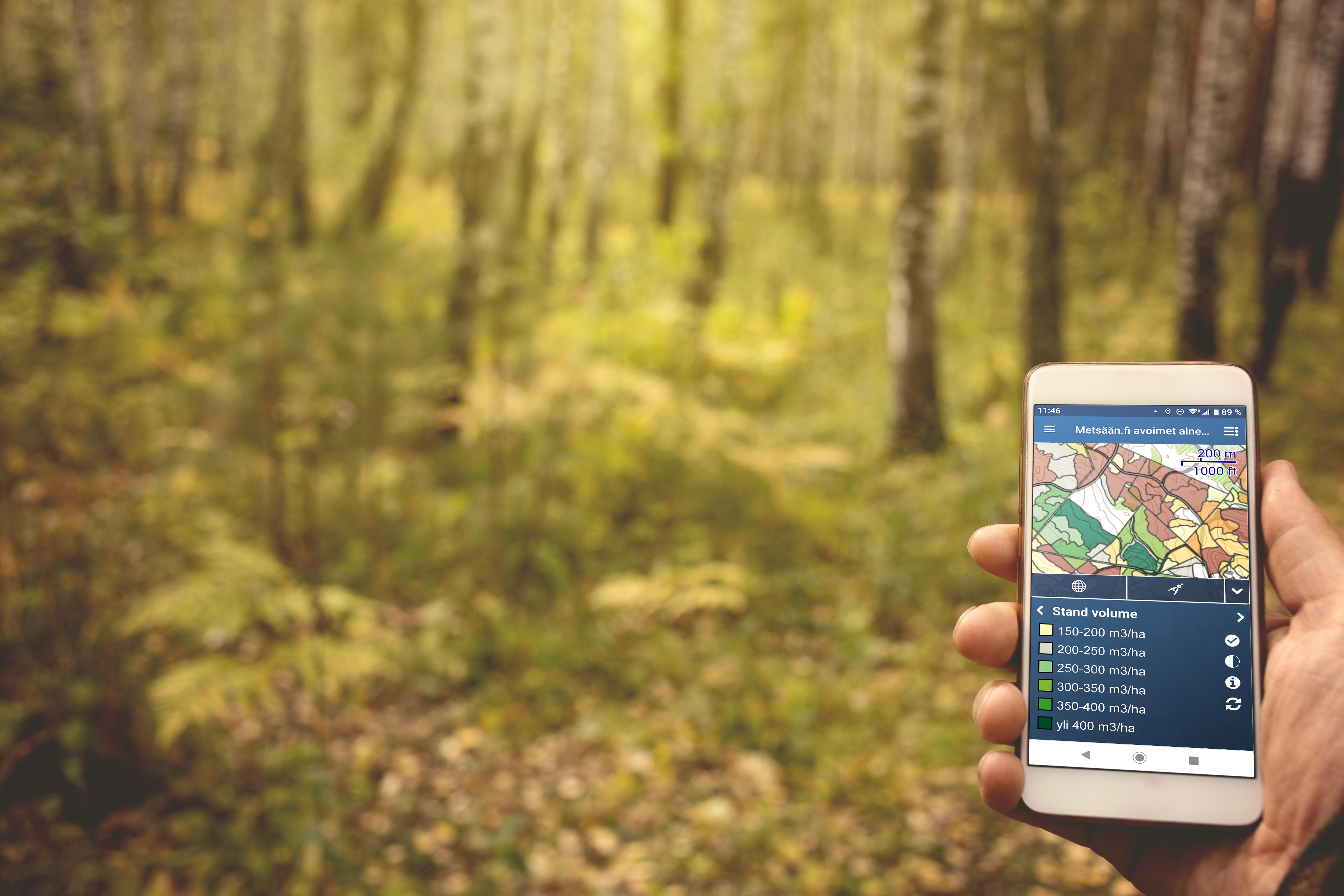 ProMS Mobile metsätietosovellus kännykällä.