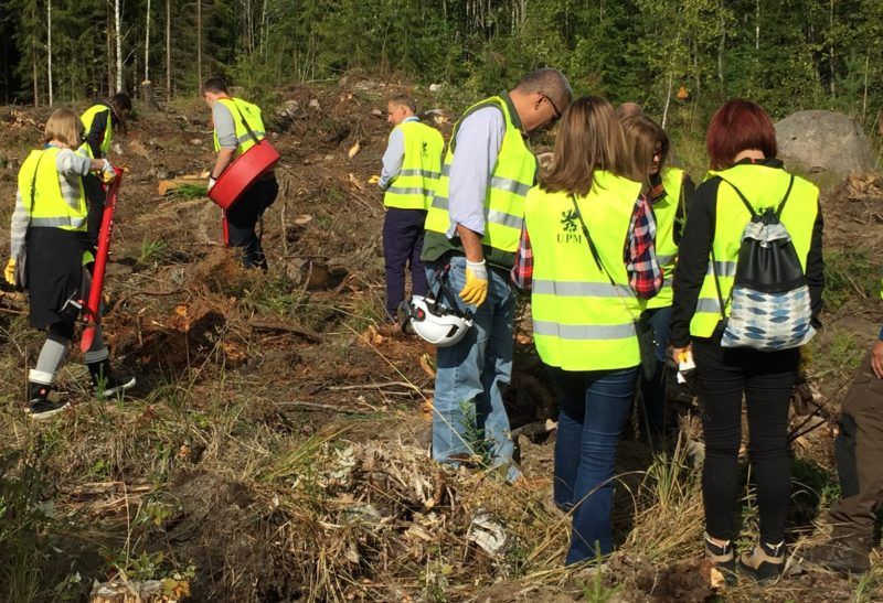 Some 150 million trees are planted every year in the Finnish forests. The EU forest directors chip in on the work. Photo: Kai Lintunen