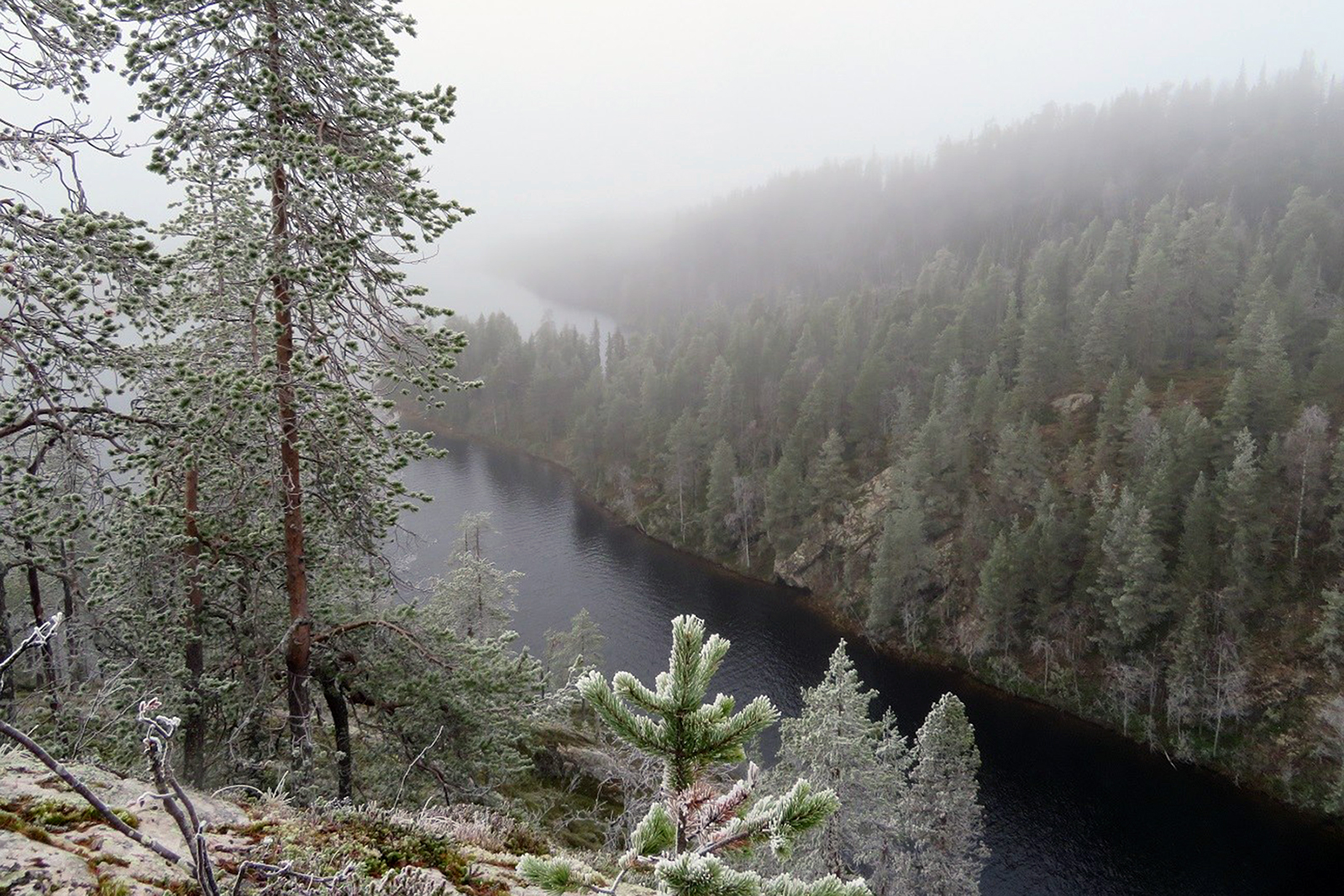 Porontima Canyon is one of the pearls of Kuusamo nature tourism. Photo: Laila Hökkä