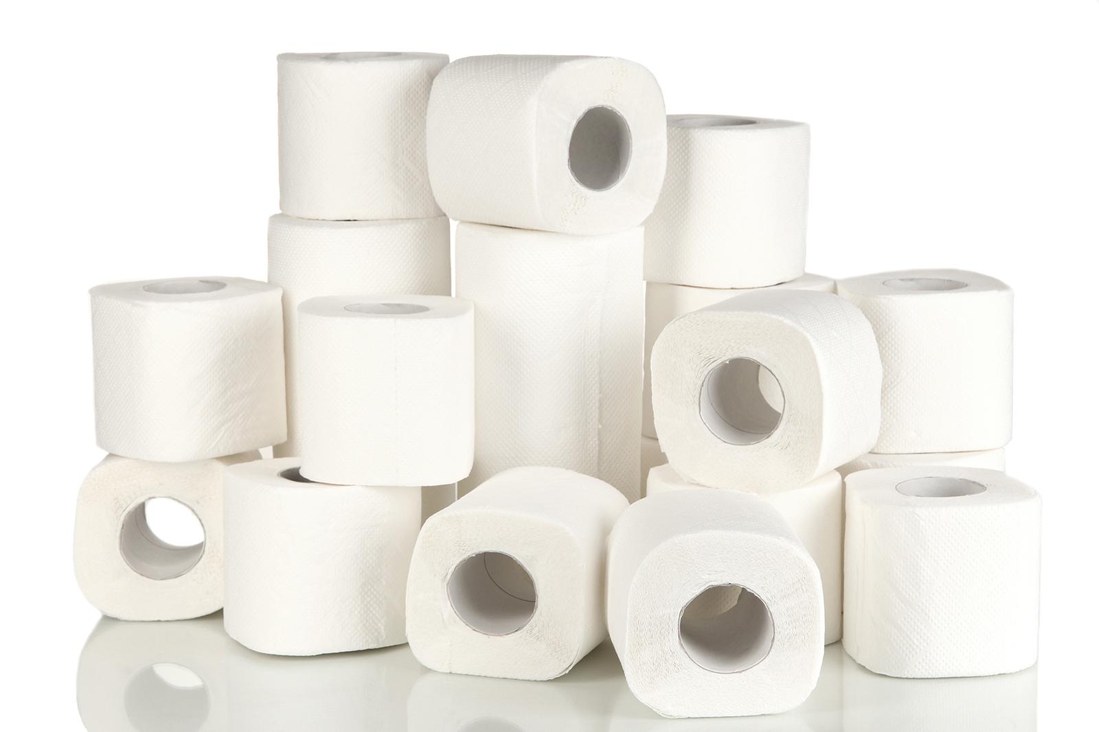 Yhdestä keskikokoisesta puusta voidaan Metsä Tissuen mukaan valmistaa yli tuhat rullaa WC-paperia. Kuva: Shutterstock