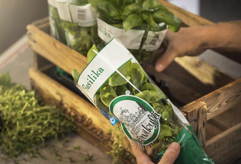 Woodly tekee tuotekehitysyhteistyötä salaatti- ja yrttiruukkuja kasvattavan Järvikylän kanssa. Kuva: Woodly
