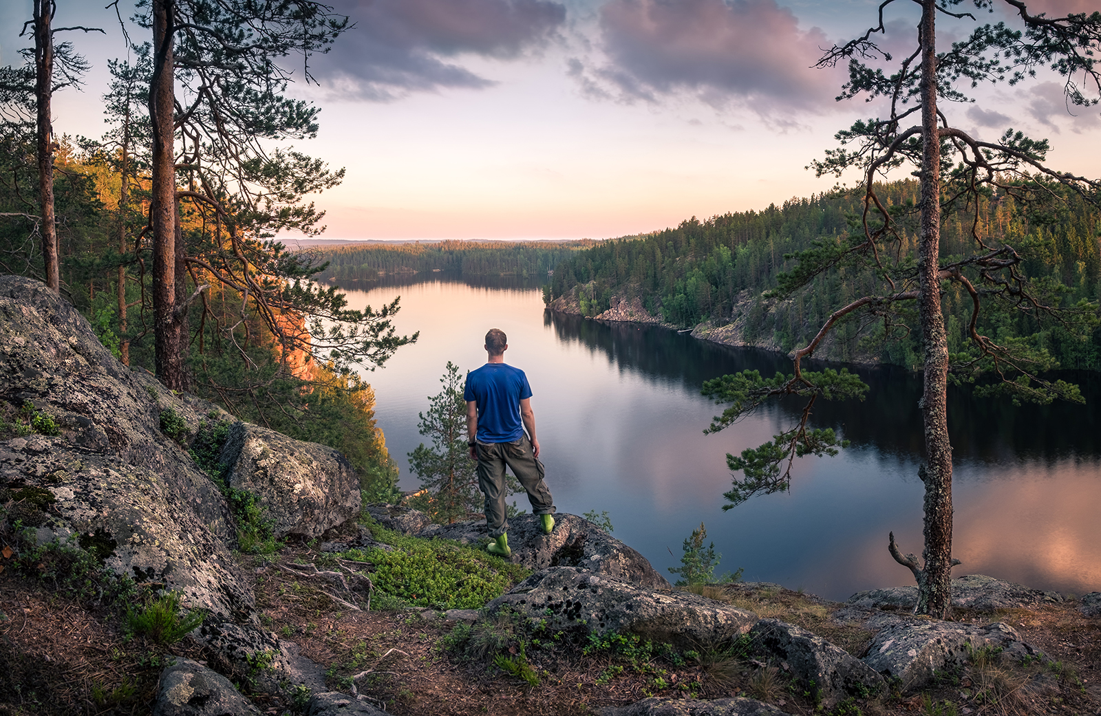 A total of 75 percent of Finland's area is covered by forest. Photo: Jani Riekkinen