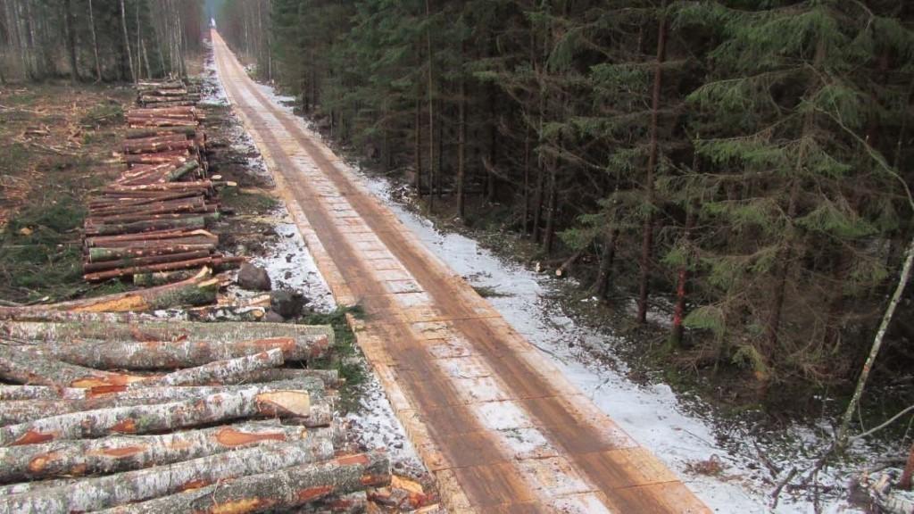 CLT-levyillä vahvistettu metsätie. Kuva: Ilga Bērzkalna