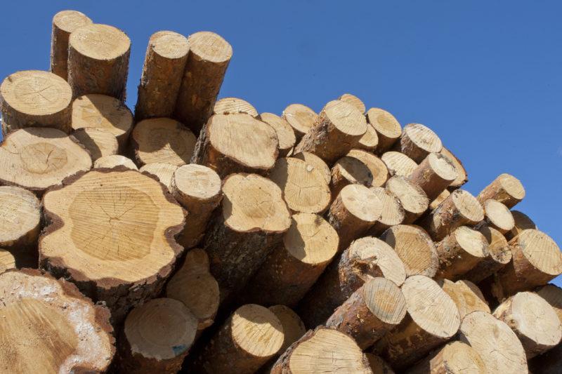Log stack. Photo: Erkki Oksanen